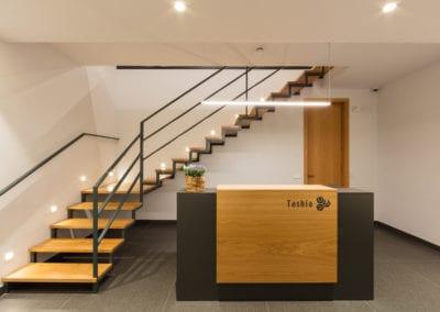 Oficinas Tashia Artesa de Segre